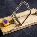 Covid-19: TrickBot cambia esca